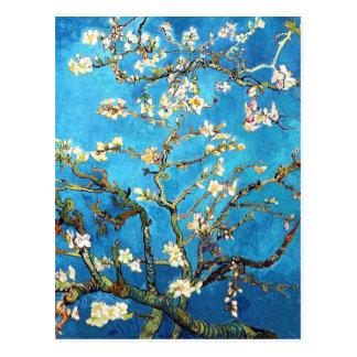 Beaux-arts de fleur d'amande de Van Gogh Cartes Postales
