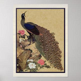 Beaux-arts japonais vintages de paon et de posters