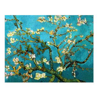 Beaux-arts se développants d'arbre d'amande de Van Cartes Postales