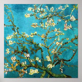 Beaux-arts se développants de l'arbre d'amande de  poster