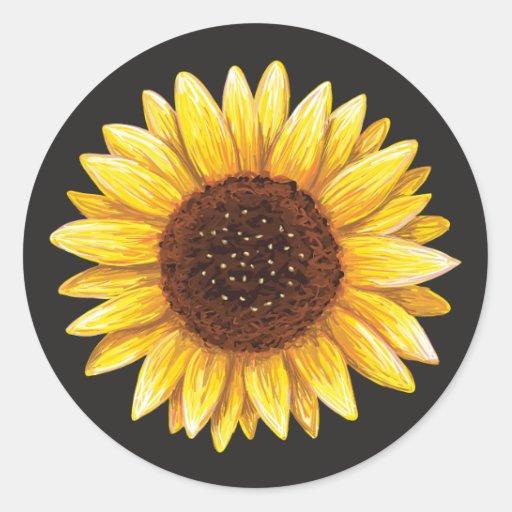 Beaux autocollants jaunes de dessin de tournesol zazzle - Dessin de tournesol ...