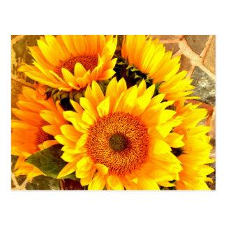 Beaux cadeaux de bouquet de tournesol carte postale