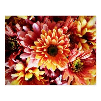 Beaux cadeaux de conception de bouquet floral d au cartes postales