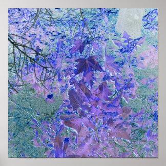 Beaux effets d'arbre et de feuille posters