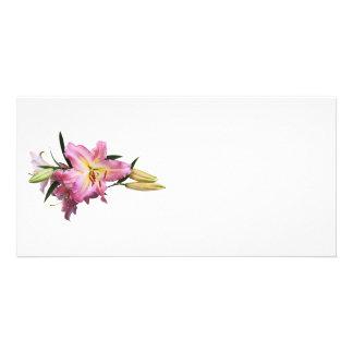 Beaux lis roses modèle pour photocarte