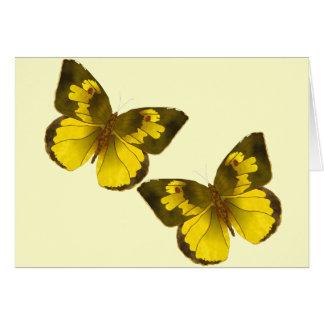 Beaux papillons d'or cartes