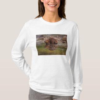 beaver, canadensis de roulette, entre pour un bain t-shirt