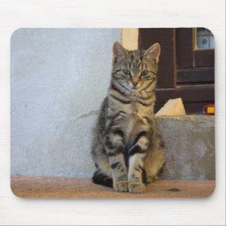 Bébé adorable de chat de tigre tapis de souris
