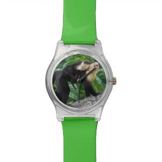 Bébé de transport de singe adulte de capucin sur s montres cadran