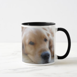 Bébé, tasse de race de chien de golden retriever