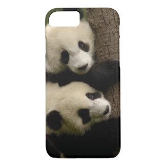 Bébés de panda géant (melanoleuca d'Ailuropoda) 2 Coque iPhone 7
