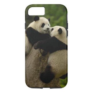 Bébés de panda géant (melanoleuca d'Ailuropoda) Coque iPhone 7