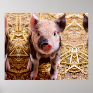 Bébés mignons d'animaux de ferme de porcelet de affiche
