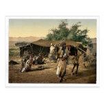 Bédouins et leurs tentes, la Terre Sainte Photochr Cartes Postales