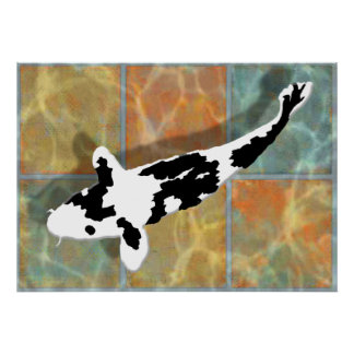 Bekko noir et blanc Koi dans l étang carrelé Posters
