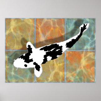 Bekko noir et blanc Koi dans l'étang carrelé Poster
