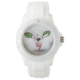 Bel amoureux des animaux blanc de chaton de chat montres