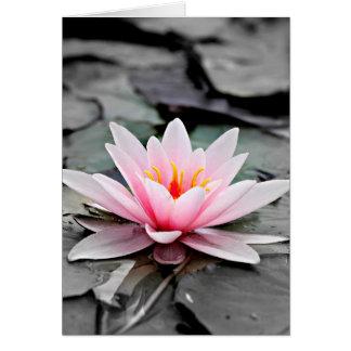 Bel art rose de zen de nénuphar de fleur de Lotus Cartes De Vœux