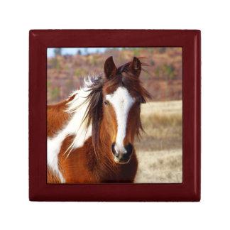 Belle boîte-cadeau de cheval de peinture petite boîte à bijoux carrée