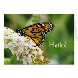 Belle carte de voeux de papillon