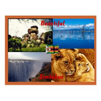 Belle carte postale du Zimbabwe
