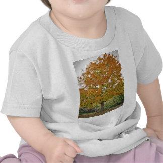 Belle conception de nature d'arbre d'or d'automne t-shirts