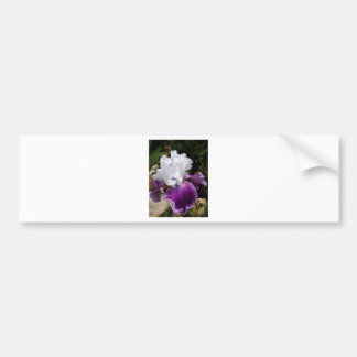Belle conception pourpre et blanche d'iris autocollant de voiture