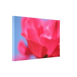 Belle copie de toile de fleur de rose de rose