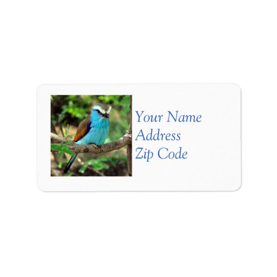 Belle étiquette postale d'oiseau bleu