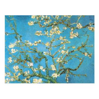 Belle peinture d'antiquité de fleur d'amande carte postale