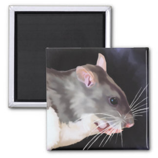 Belle peinture de rat magnet carré
