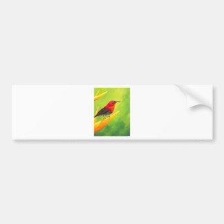 Belle peinture de Sunbird !  Artiste Elena Esina d Autocollant Pour Voiture