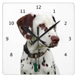 Belle photo de chien dalmatien pendules murales