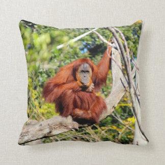 Belle photo d'orang-outan oreiller