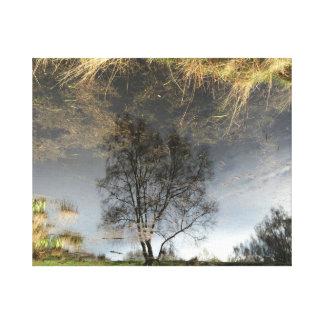 Belle toile d'art d'arbre de photographie de toiles