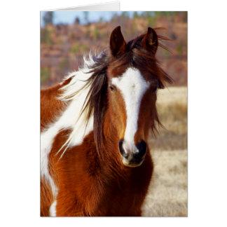 Belles cartes de note de cheval de peinture