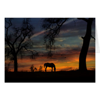 Belles cartes vierges de note de cheval