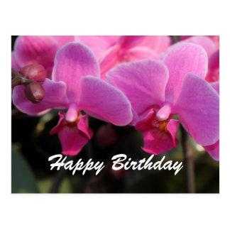 Belles fleurs roses d'orchidée. Souhaits Carte Postale