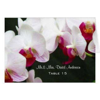 Belles orchidées blanches épousant la carte