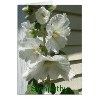 Belles roses trémière blanches, sympathie cartes de vœux