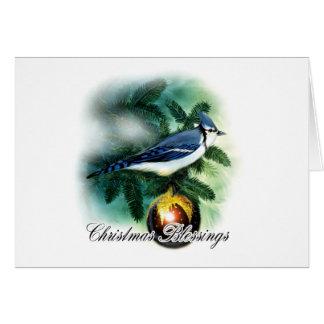 Bénédictions de Noël - carte de Noël - oiseau et