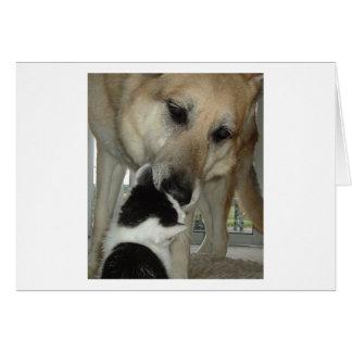 Berger allemand et ami de Kitty Carte De Vœux