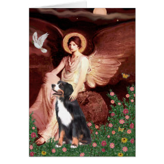 Bernese - ange posé cartes