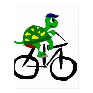 Bicyclette drôle d'équitation de tortue cartes postales