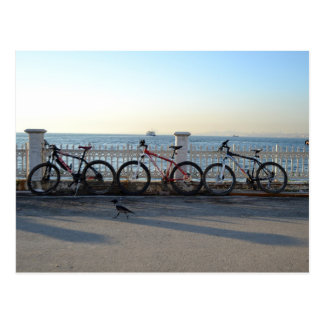 Bicyclettes avec une corneille carte postale