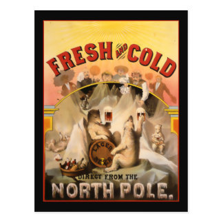 Bière de Pôle Nord Cartes Postales