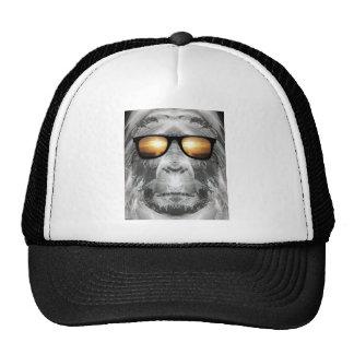 Bigfoot aux nuances casquette