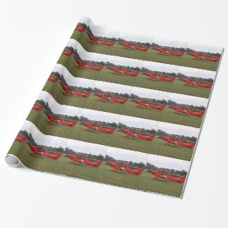 Biplan de Hatz Papiers Cadeaux