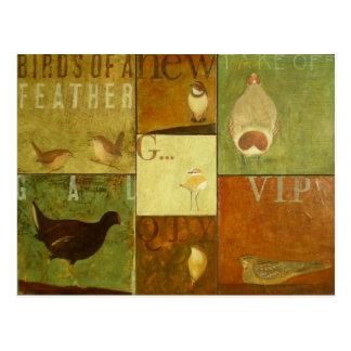 Birdies Carte Postale