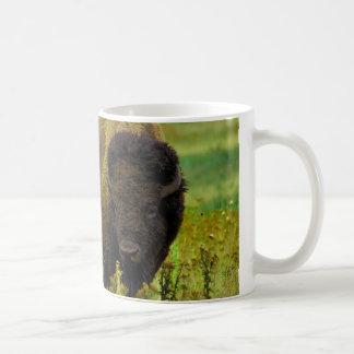 Bison américain mug